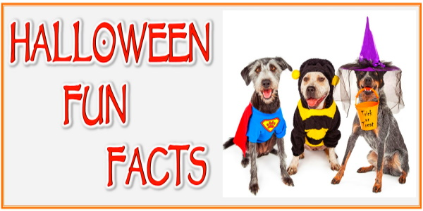 HALLOWEEN FUN FACT #4 CUTE DOGS IN HALLOWEEN COSTUMES